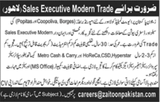 Sales Executive in a company Pakistan