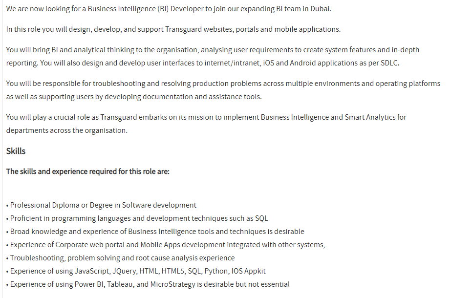 Business Intelligence Developer in a company United Arab Emirates
