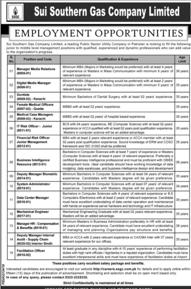 Business Intelligence Resource in a company Pakistan Karachi