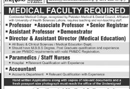 PROFESSOR in a company Pakistan Lahore