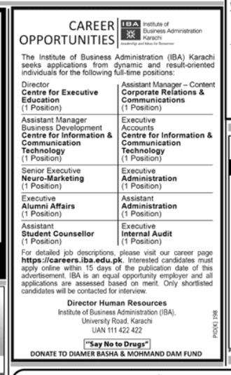 Executive - Internal Audit in a company Pakistan Karachi