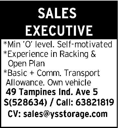 Sales Executive in a company Singapore Singapore