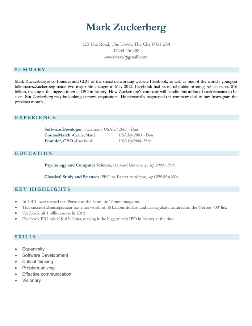 Functional CV for Information Technology Professionals Template